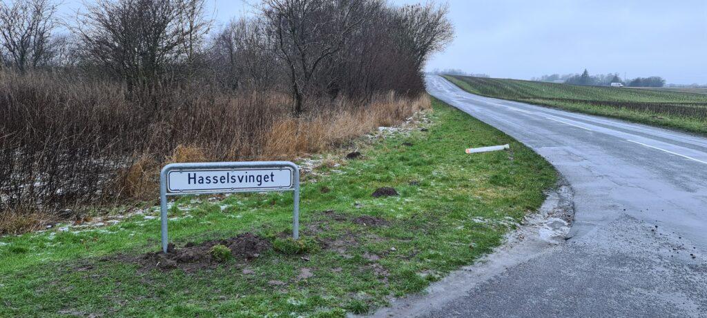 Lemmingvej 2 skifter navn til Hasselsvinget